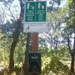 公園のDog Bag