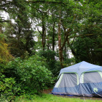 Koki_キャンプのテント
